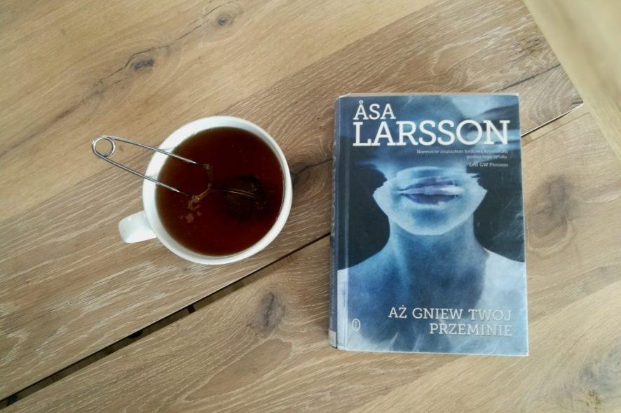 Aż gniew twój przeminie Asa Larsson